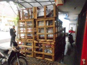 Persiapan Pengiriman Paket Mesin Abon dan Kerupuk